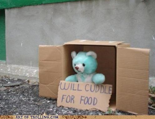 cute,homeless,IRL,teddy