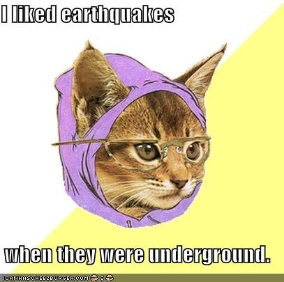 animemes,earthquake,east coast,felt,Hipster Kitty,news,underground