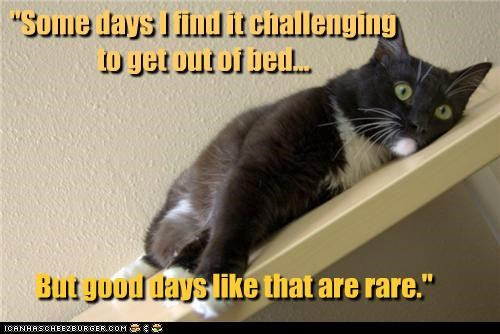 """""""Some days I find it challenging to get out of bed... But good days like that are rare."""""""