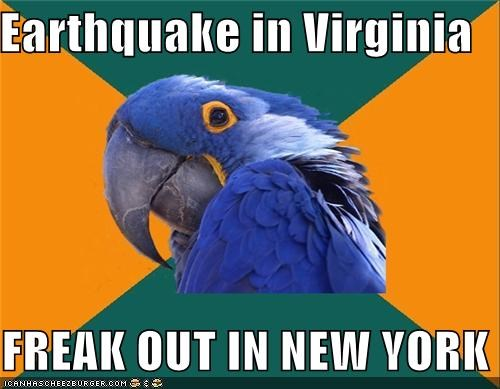 america Breaking News earthquake new york Paranoid Parrot states - 5121488640