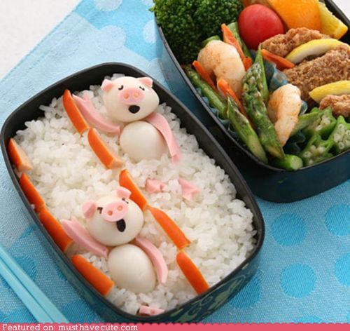 backstroke bento box eggs epicute ham lunch pig rice swim - 5121712384
