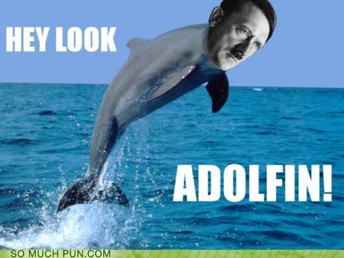 adolph hitler dolphin Hall of Fame hitler juxtaposition literalism similar sounding suffix - 5122713088