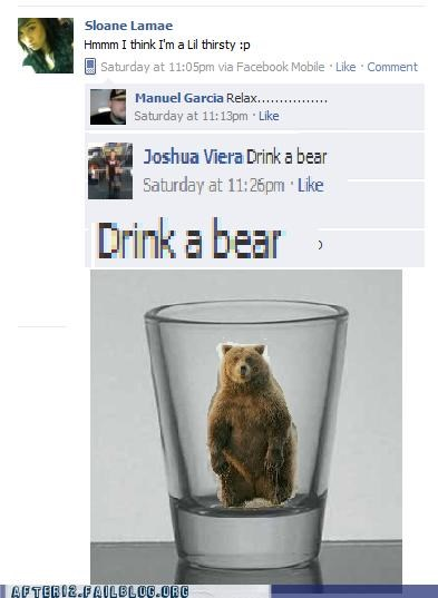 bear,booze,liquor,pun,shot