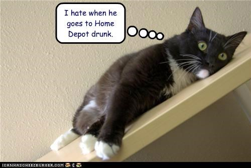 caption captioned cat do not want drunk goes hate home depot when - 5123380992