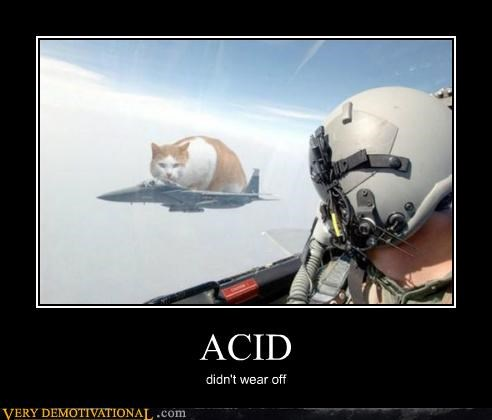 acid,hilarious,pilot,wear off,wtf