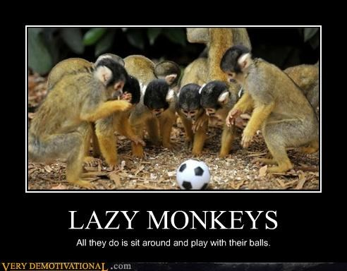 balls idiots lazy monkeys sad but true soccer - 5124186624