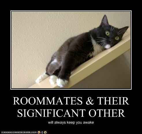 ROOMMATES & THEIR SIGNIFICANT OTHER will always keep you awake