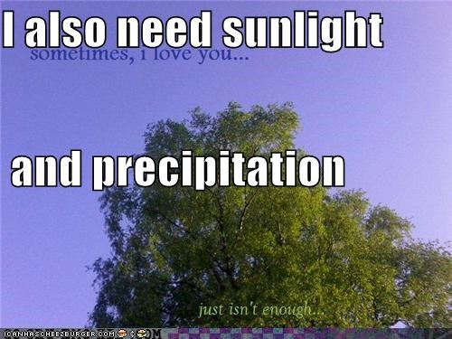 I also need sunlight and precipitation