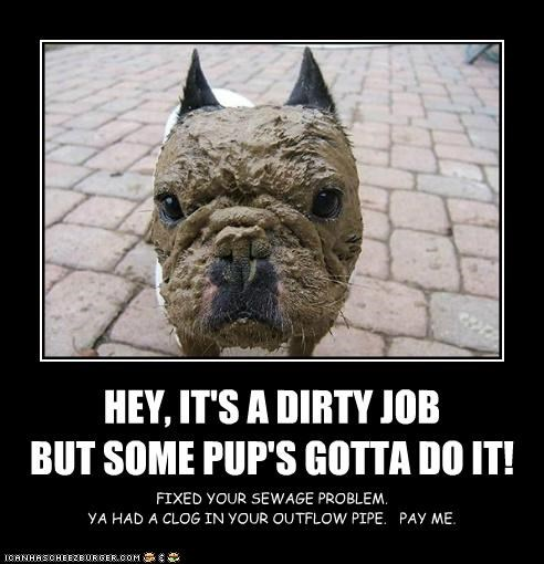 HEY, IT'S A DIRTY JOB BUT SOME PUP'S GOTTA DO IT! FIXED YOUR SEWAGE PROBLEM. YA HAD A CLOG IN YOUR OUTFLOW PIPE. PAY ME.