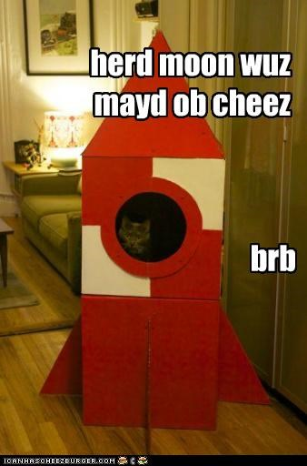 brb caption captioned cat cheese heard made moon rocket - 5126496000