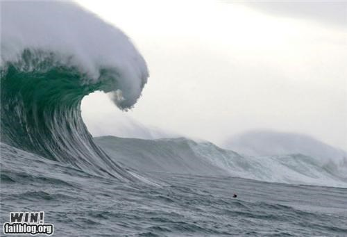 huge,mother nature ftw,ocean,surf,tidal wave,wave