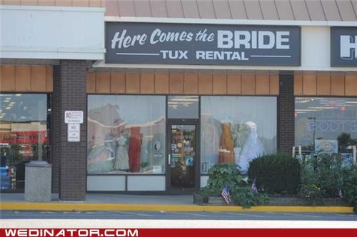 bridal shop funny wedding photos gay rights yelp - 5126749184