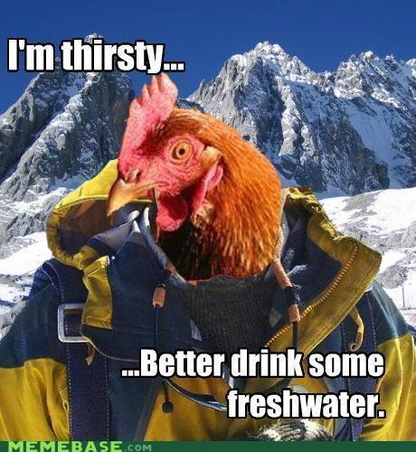 anti joke bear grylls chicken fresh pee thirsty water