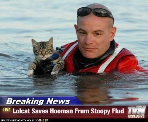 breaking,Breaking News,caption,captioned,cat,flood,human,lolcat,lolwut,news,saves,stupid