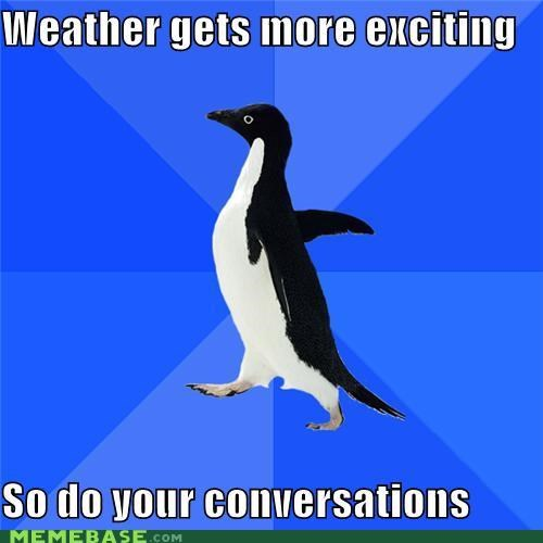 boring,conversations,people,socially awkward penguin,talking,weather