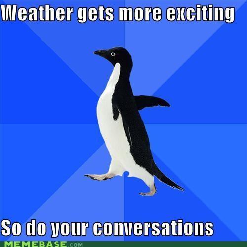 boring conversations people socially awkward penguin talking weather - 5128338688