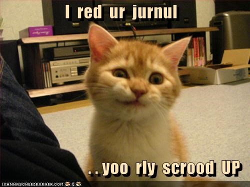 afraid caption captioned cat journal kitten read really screwed up you - 5128553728