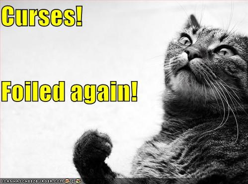 again caption captioned cat curses foiled - 5129466880