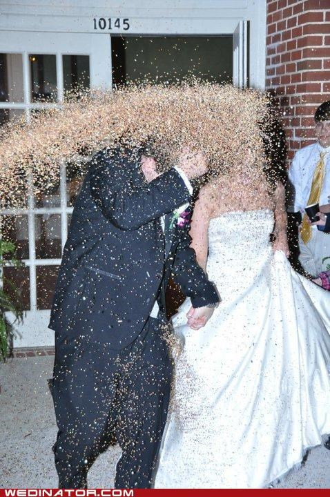 recessional bride birdseed groom escape confetti