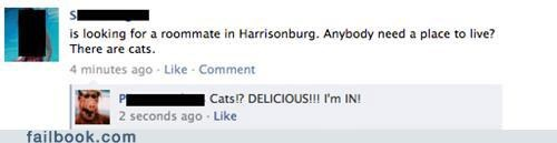 Alf Cats roommate win witty reply - 5130318336