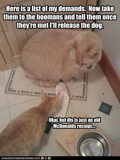 caption captioned cat Cats demands dogs human humans instructions list McDonald's receipt release tabbies tabby take