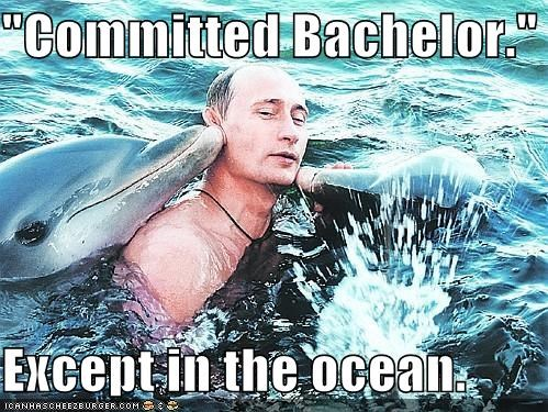 bachelor dirty dolphins Pundit Kitchen russia Vladimir Putin - 5130803712