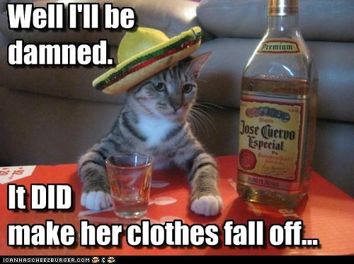 alcohol best of the week caption captioned cat clothes embarrassing fall Hall of Fame human idiom literalism make off tequila truth WoW - 5131996416