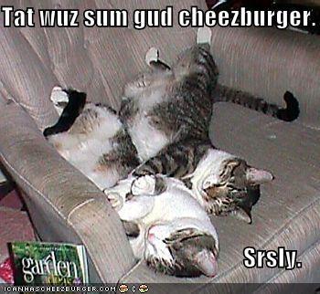 Tat wuz sum gud cheezburger.                                                    Srsly.
