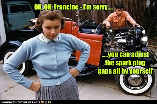 OK, OK, Francine - I'm sorry.... .....you can adjust the spark plug gaps all by yourself
