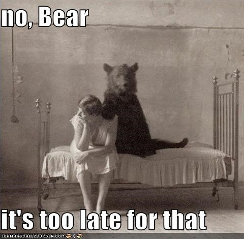 animal bear funny Photo wtf - 5133966592