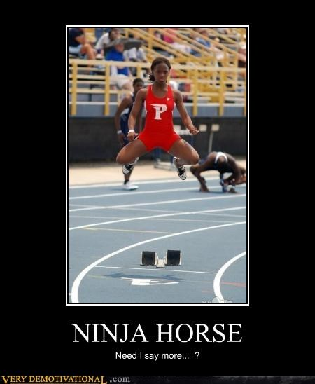 horse,ninja,Terrifying,wtf