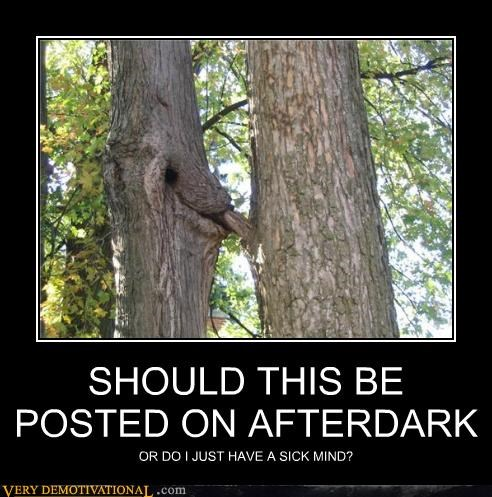 after dark dirty mind hilarious tree wtf