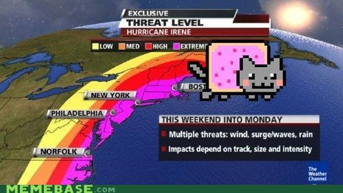 animemes hurricane Nyan Cat threat weather weekend - 5134429440