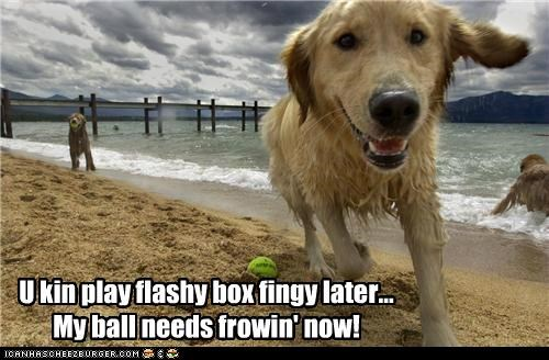 U kin play flashy box fingy later... My ball needs frowin' now!