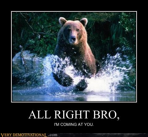 all right bro bear bears hilarious - 5135109632