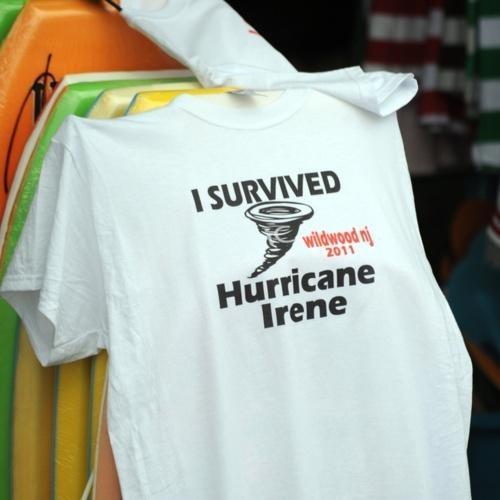 Damn Nature U Confusing hurricane irene Tee - 5135192832