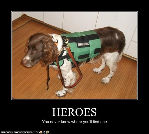 HEROES You never know where you'll find one
