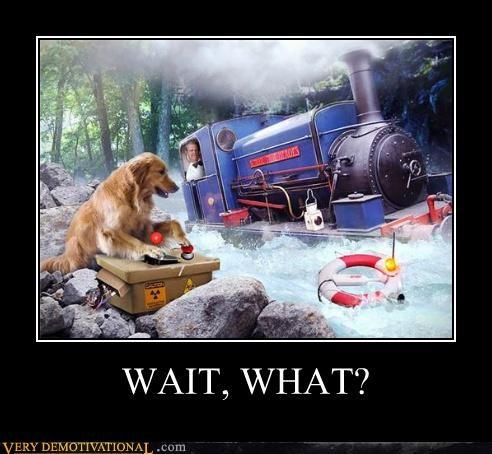 dogs hilarious makes sense technology trains - 5136416256
