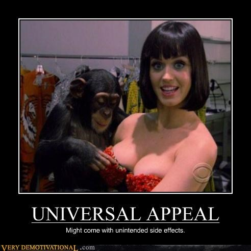 animals babe implied horse love katy perry monkey Pure Awesome - 5137467648