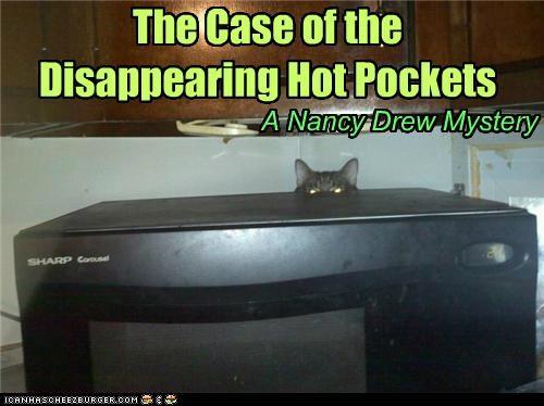 animals Cats creepy food hiding I Can Has Cheezburger microwaves mystery nancy drew - 5137827328