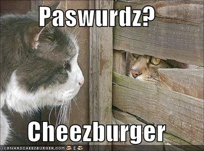 Cheezburger Image 5138539776