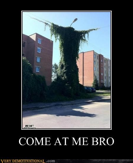 come at me bro,hilarious,ivy,plants,wtf