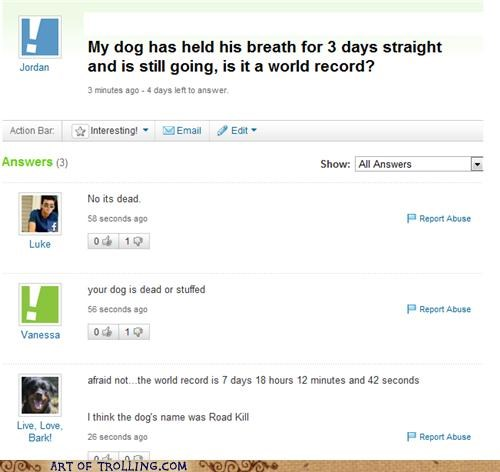 guinness world records dogs yahoo answers world record - 5140470784