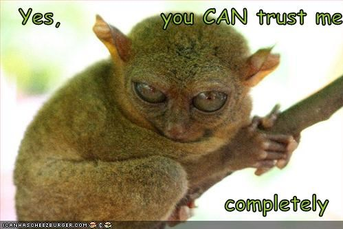 bushbaby can caption captioned completely evil eyes lying me sinister Staring trust yes you - 5141061888