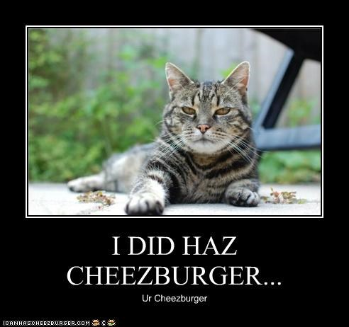 Cheezburger Image 5141381376
