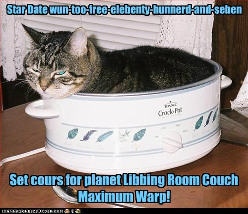 animals Cats crock pots I Can Has Cheezburger living room planets space travel star date - 5142079232