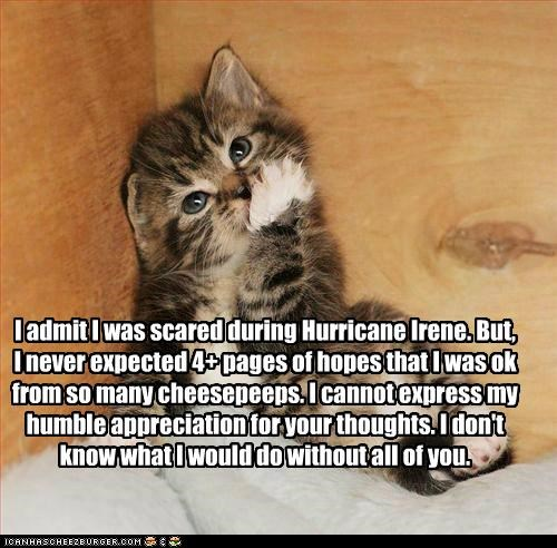 I admit I was scared during Hurricane Irene. But, I never expected 4+ pages of hopes that I was ok from so many cheesepeeps. I cannot express my humble appreciation for your thoughts. I don't know what I would do without all of you.