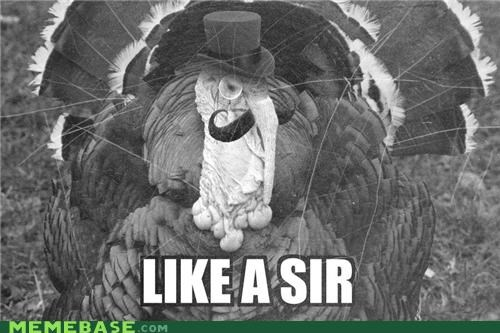 fancy hat sir mustache Turkey - 5142593792
