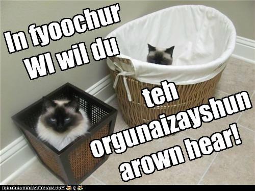 In fyoochur WI wil du teh orgunaizayshun arown hear!