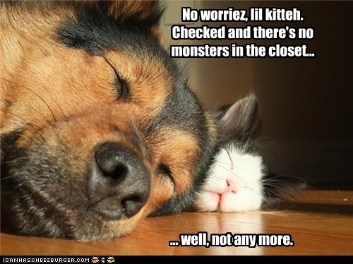 No worriez, lil kitteh. Checked and there's no monsters in the closet... ... well, not any more.